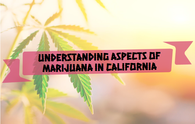 Understanding aspects of marijuana in California